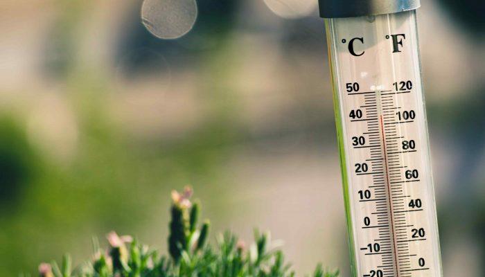 thermomètre canicule